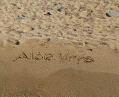 Mantenere a lungo l'abbronzatura con Aloe Vera in gel